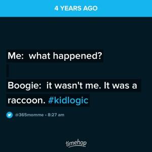 Me:  What happened?  Boogie:  It wasn't me.  It was a racoon.  #kidlogicBoogie:  It wasn't me.  It was a racoon. #kidlogic